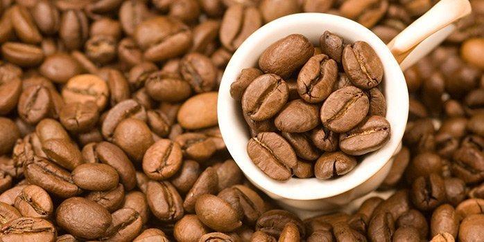 mis on maxitrimi kohv murda rasva toidus