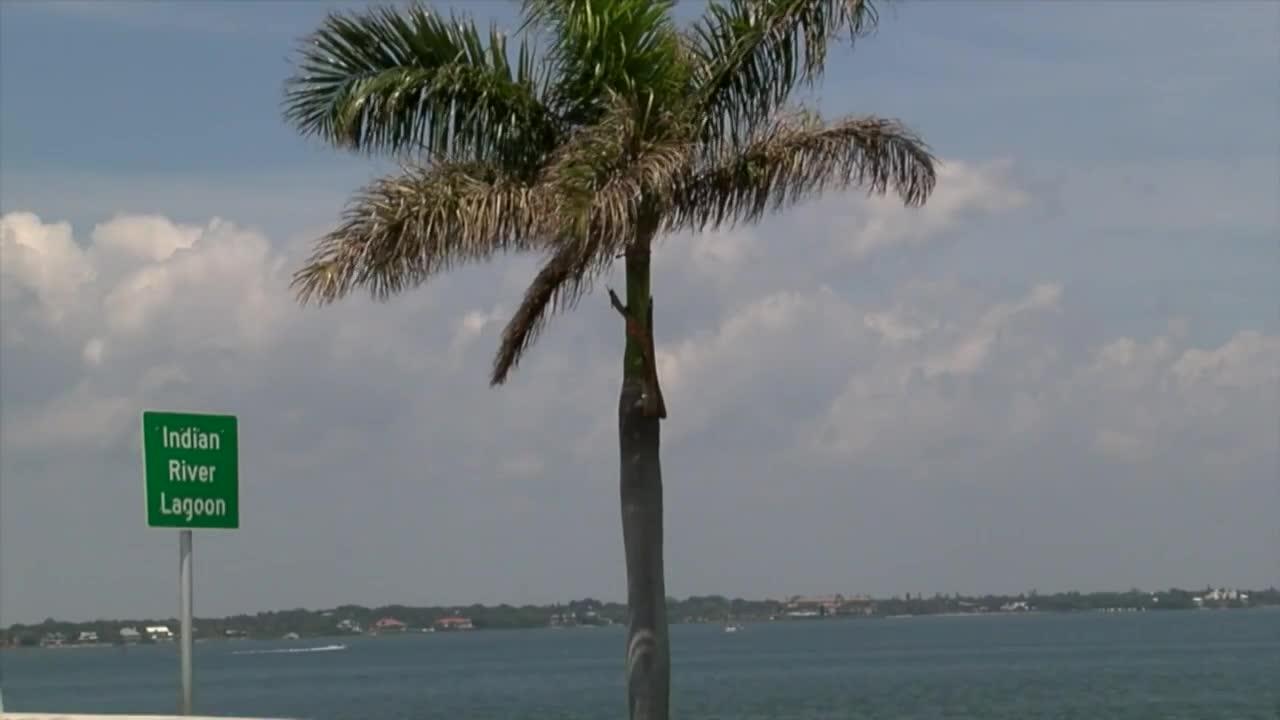 kiire kaalulangus west palm beach kuidas eemaldada randmerasva
